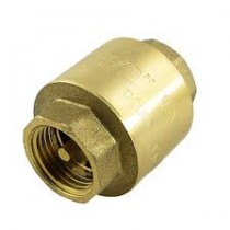 Valve Non Return Brass Spring Check